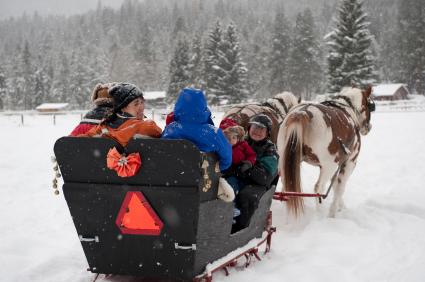 sleigh ride insurance